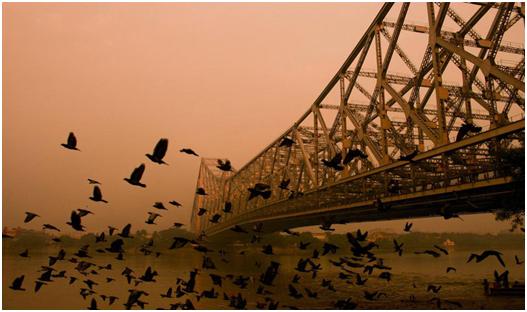 Territy Bazar - Exploring The Chinese Quarters Of Kolkata